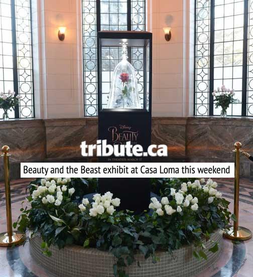 Tribute.ca
